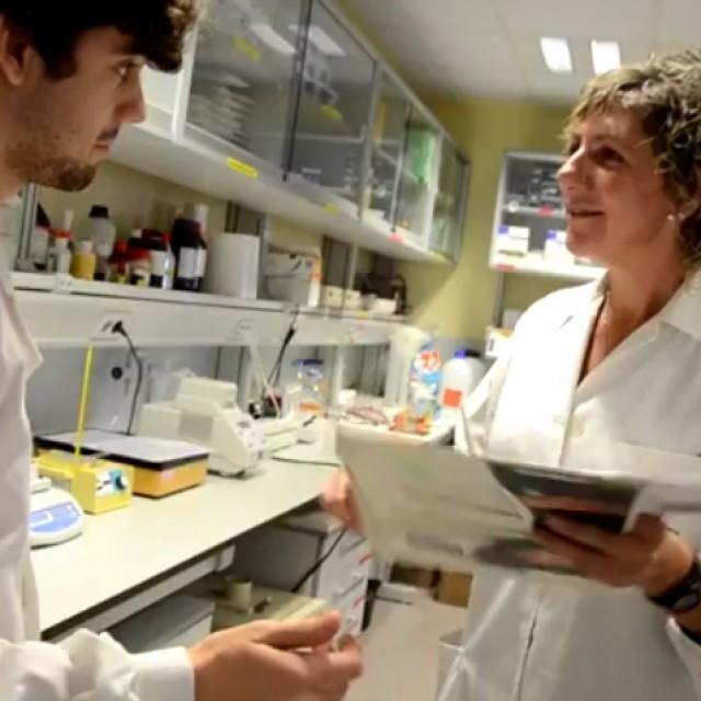 Varias expertas del CSIC explican los principales riesgos y medidas preventivas en laboratorios
