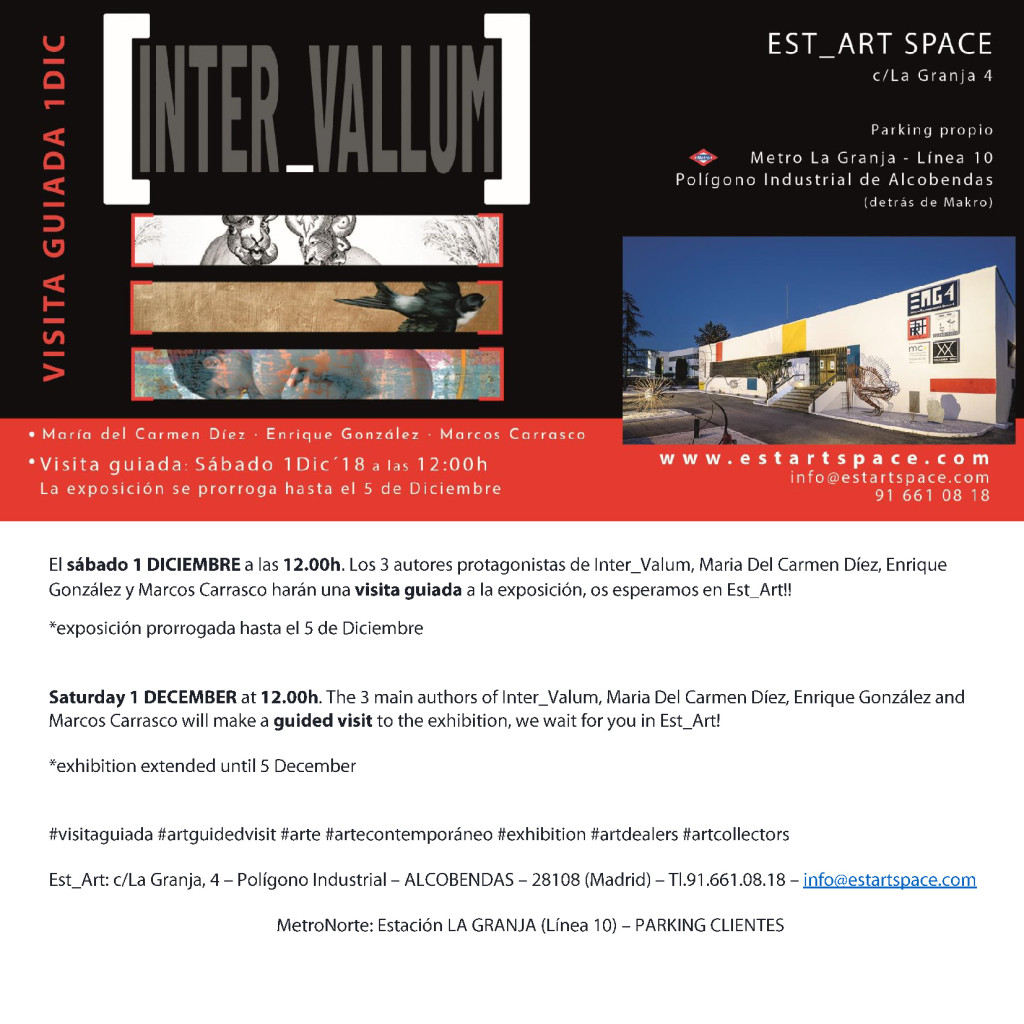 EST_ART - VISITA GUIADA INTER-VALLLUM - SABADO 1DIC 12h